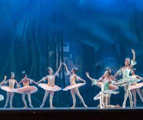 Graceful ballet performance Stock Photo 01