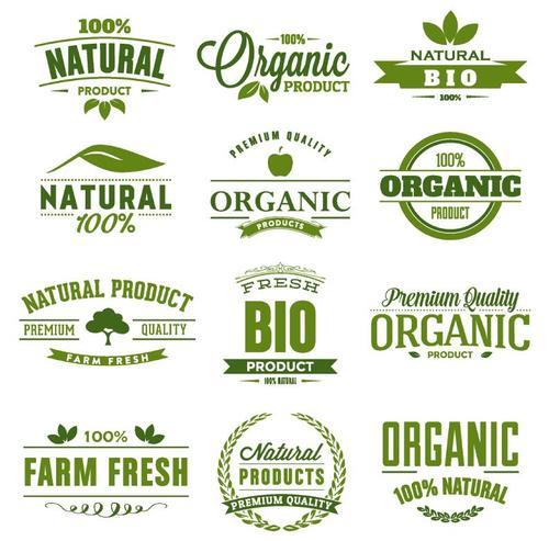 Green eco labels design vectors set