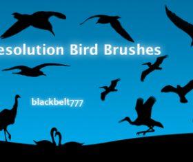 HD Birds Photoshop Brushes