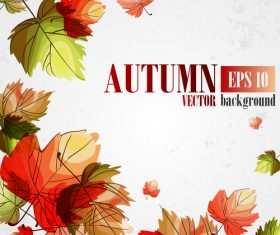 Hand drawn leaves with autumn background vector 01