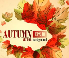 Hand drawn leaves with autumn background vector 02