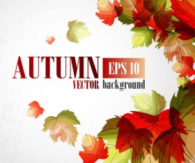 Hand drawn leaves with autumn background vector 03