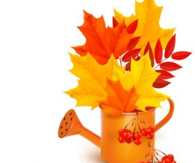 Maple leaves and watering can vector