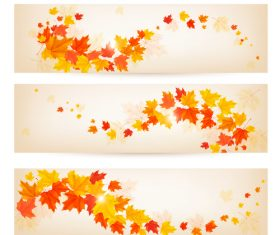 Maple leaves with autumn banners vector 03