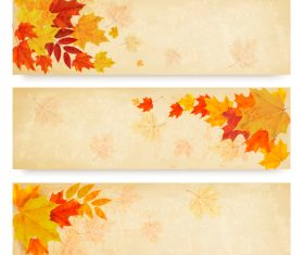 Maple leaves with autumn banners vector 04