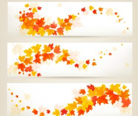 Maple leaves with autumn banners vector 05