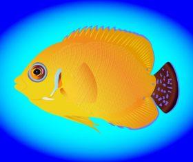 Multicolored skin fish sea animal vector 13
