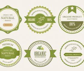 Natural eco badge vector material