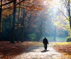 Senior man walking in autumn park Stock Photo