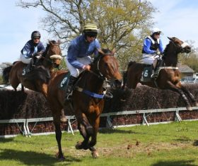 Stock Photo Horse racing across obstacles 04