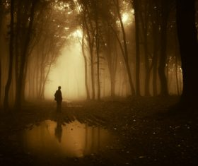 Stock Photo Man standing in the misty woods