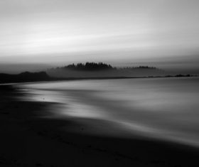 Stock Photo Misty sea forest photography