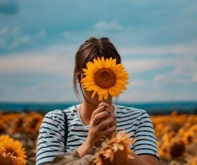Sunflower was covering his face figure photography Stock Photo
