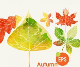Watercolor autumn leaves vectors set 02