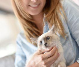 Woman with kitten on lap Stock Photo 04