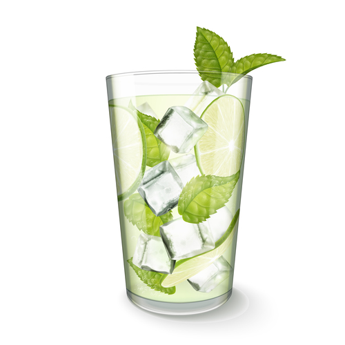 mint with lemon water vector
