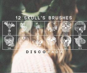 12 Skulls and Anatomy Photoshop Brushes