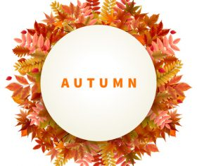 Autumn leaves frame with white background vector