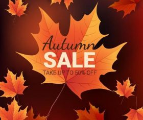 Autumn leaves with autumn sale background vector