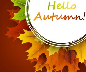 Autumn leaves with cricles background vector 01