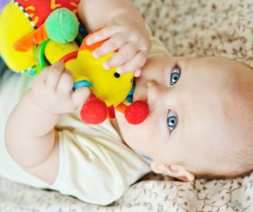 Baby biting a toy Stock Photo 02