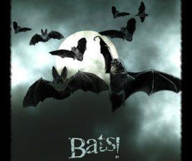 Bats Photoshop Brushes
