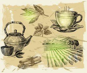 Farm with tea vector