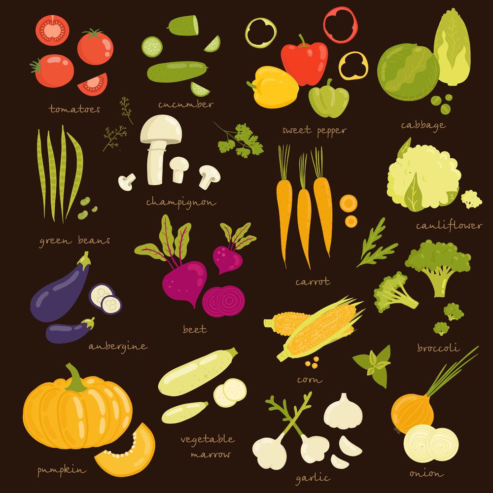Fresh vegetables vector background illustration 04