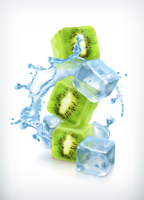 Kiwi with ice cubes and water splash vector