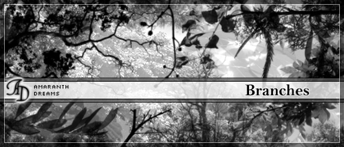 Leaves and Branches Photoshop Brushes