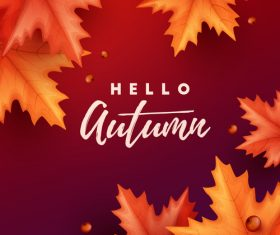 Maple leaves with red autumn background vector 01