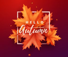 Maple leaves with red autumn background vector 02