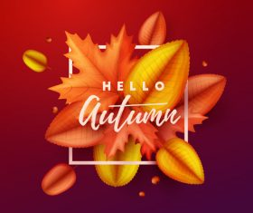 Maple leaves with red autumn background vector 03