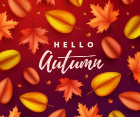 Maple leaves with red autumn background vector 05
