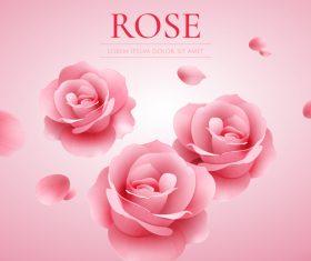 Pink rose with elegant background vector