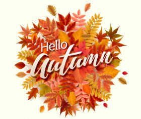 Red leaves with autumn white background vector