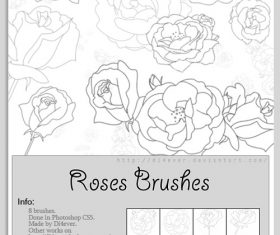 Roses Outlines Photoshop Brushes Set