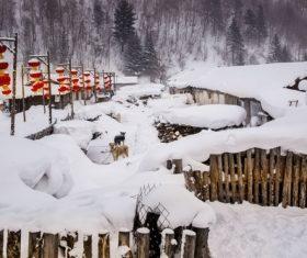 Rural snow scene Stock Photo 05