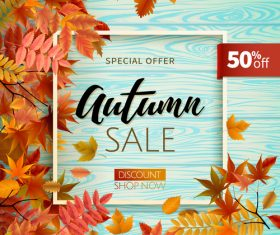 Sale wood background with autumn leaves vector 01