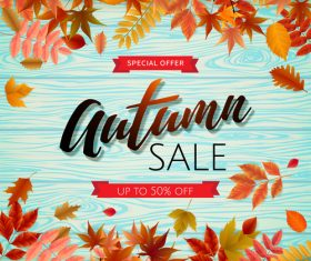 Sale wood background with autumn leaves vector 02