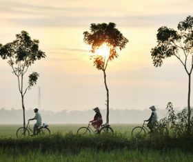 Stock Photo Asian morning country scenery