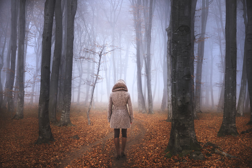 Stock Photo Woman walking on a woods trail