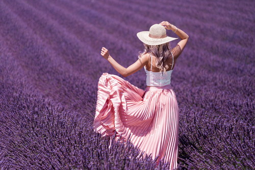 Woman walking in the sea of lavender flowers Stock Photo
