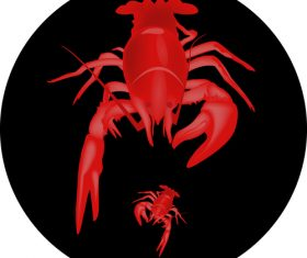 lobster design illustration vectors