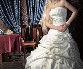 Beautiful charming bride in wedding luxurious dress Stock Photo 04