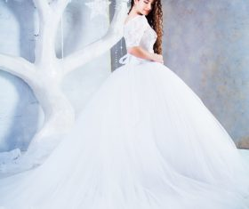 Beautiful charming bride in wedding luxurious dress Stock Photo 11