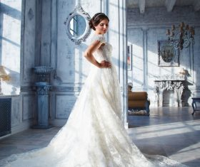 Beautiful charming bride in wedding luxurious dress Stock Photo 12