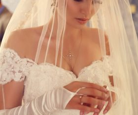Beautiful charming bride in wedding luxurious dress Stock Photo 15