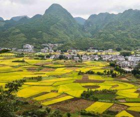 Beautiful mountain village and farmland Stock Photo 05