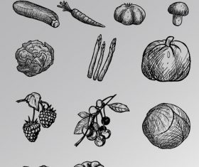 Black and white sketch vegetable vector